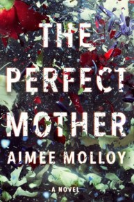 theperfectmother